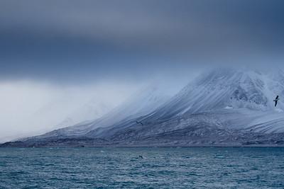 arctic_weather