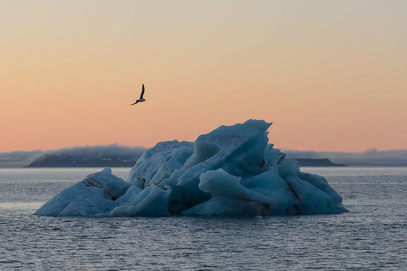Iceberg, Svalbard