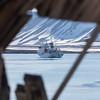 The Vavilov anchored in Sorgfjorden in glorious sunshine