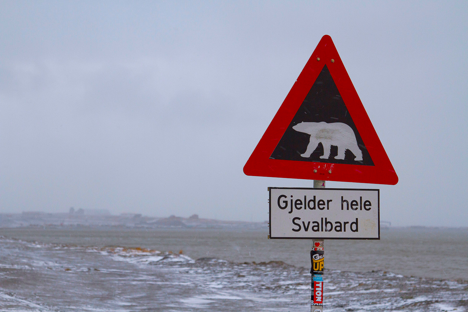 facts about svalbard