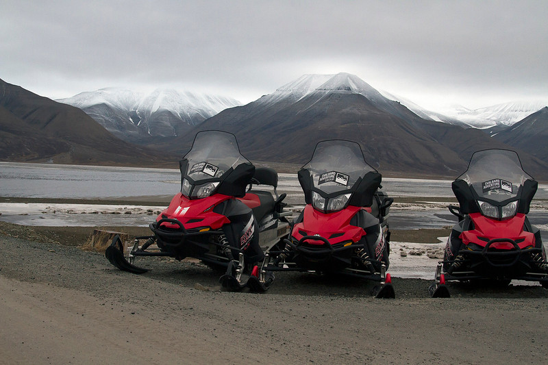 things to do svalbard