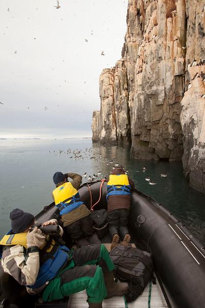 Zodiac cruising near sea bird cliffs. Svalbard Islands tour, Arctic.