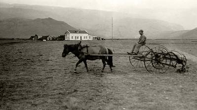 Þorvaldseyri 1943