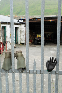 Wellingtons and a rubber glove left to dry on a yard fence