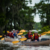 Members of Boy Scout Troop 383 of Evansville, Indiana, paddle near a large grove of cypress trees in the Atchafalaya Basin near Henderson, LA, Tuesday, July 1, 2014. The troop is currently participating in the Evangline Area Council's Swamp Base kayak trek which takes them on a sixty-mile path through the basin. <br /> <br /> <br /> Photo by Paul Kieu, The Advertiser