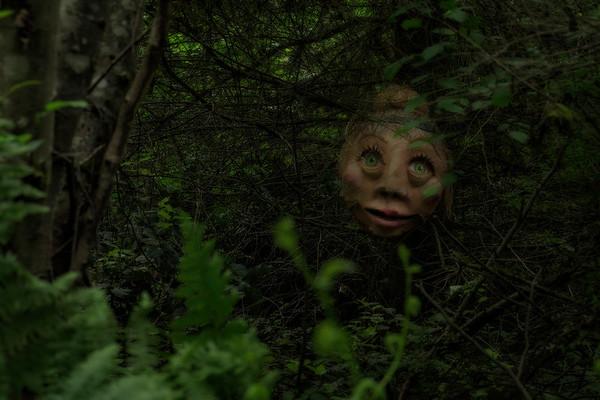 SwampBottom 2019
