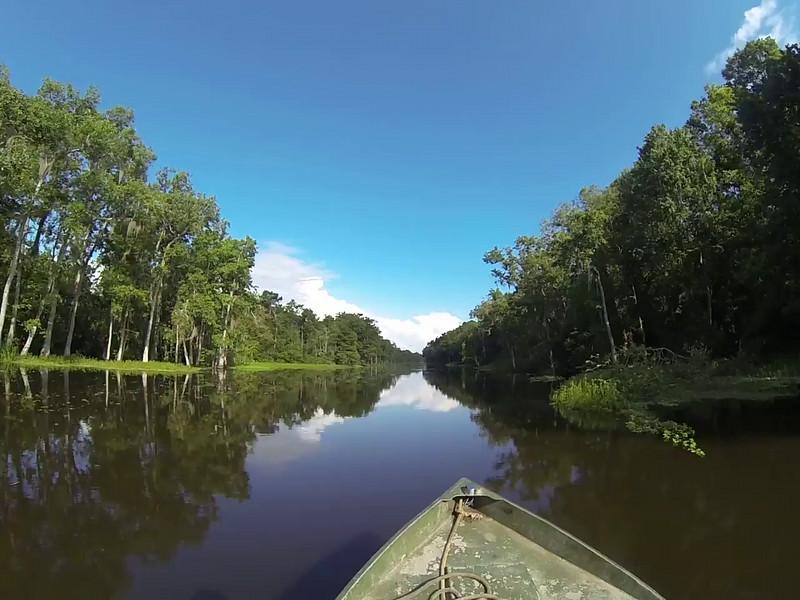 swamp ride-2