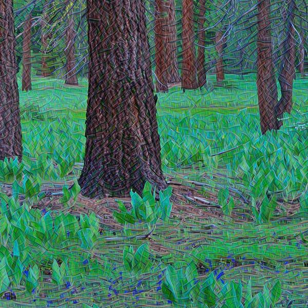 Nordic Woods - Detail #4