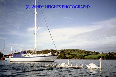 Swans + Yacht Castletownshend July 3rd '94-1 copy