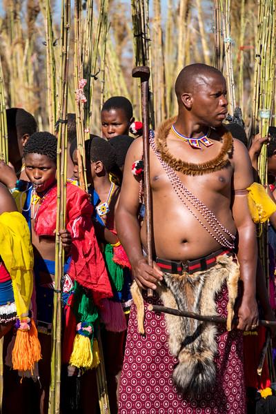 swaziland, lobamba, mammals, humans, swazi culture, umhlanga, reed dance