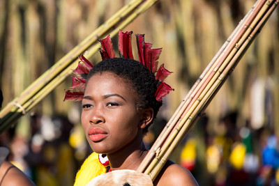 swaziland, lobamba, animals, mammals, humans, swazi culture, umhlanga, reed dance