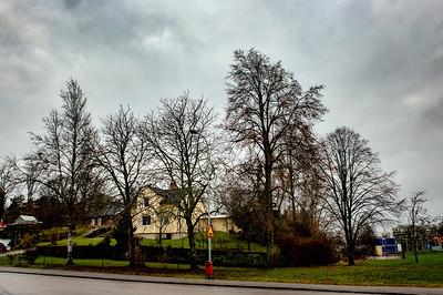 Swedish style houses
