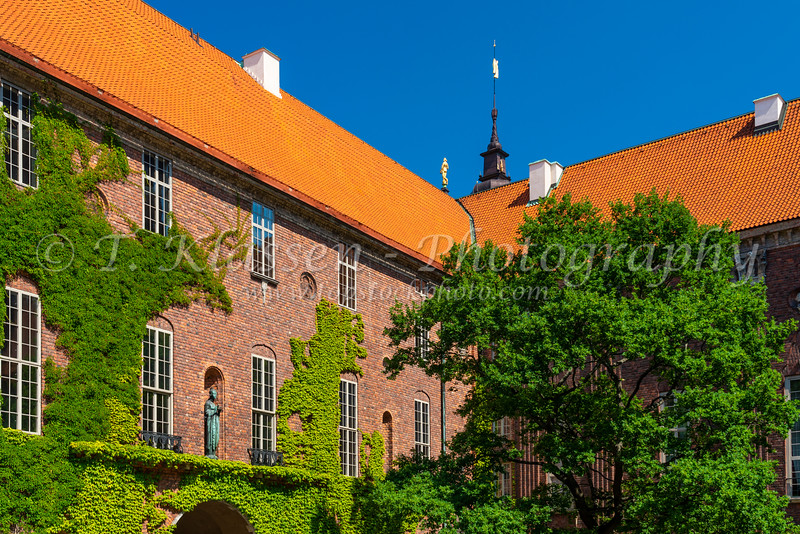 Vine covered wall of the courtyard of City Hall in Stockholm, Sweden.