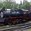 Steam, 1925 at High Chaparral on 13th June 2014  (2)