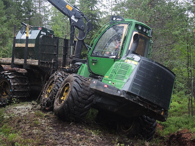 My cousin Per teaches me how to drive his forestry equipment machine, Timber train loading and Margareta Grahn