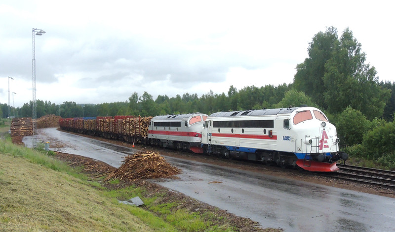 Every day. A train leaves here with this much timber ! The demand is better than five years ago.