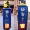 Cross walk indicators. There are often two panels: one for the bike lane, one for the walking lane. All have light and audio signals for the hearing/visually impaired.