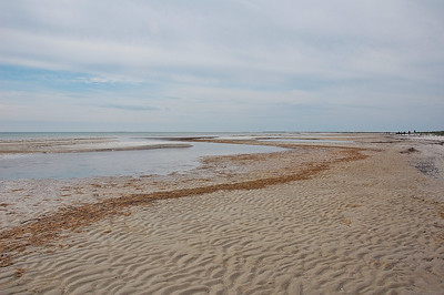 falsterbo-beach-3