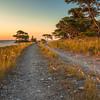 Seashore path