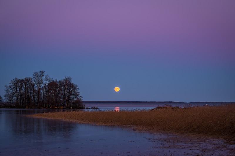 Full Moon #2