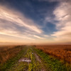 Pathway through the autumn fields
