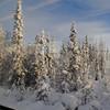 Winter wonderland from the train