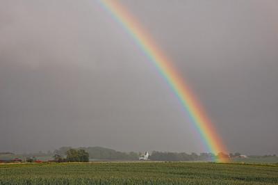 field-rainbow-5