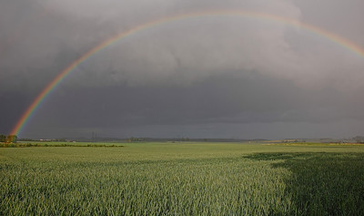 field-rainbow-3