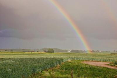 field-rainbow-2