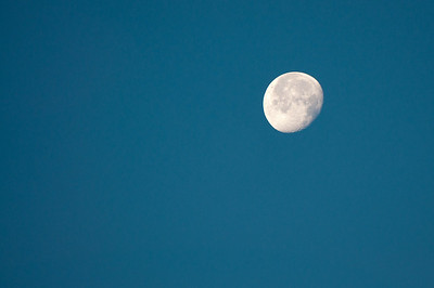 October 24 - Morning moon