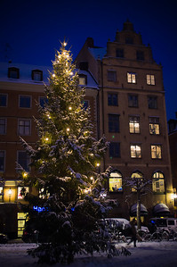 December 3 - Gamla Stan x-mas tree