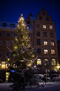 December 3 - Gamla Stan x-mas tree