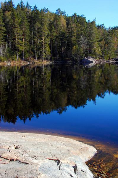 Tyresta National Park, Sweden.