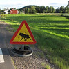 Common site....Warnings for moose crossing....this mobile Warning sign...they placed for a month if there <br /> was documentation of a car accident or visibly SEEN, crossings.