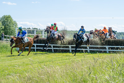 Swedish Grand National 2019 at Strømsholm