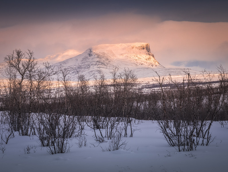 Golden Hour in the Lapland - Abisko, Sweden