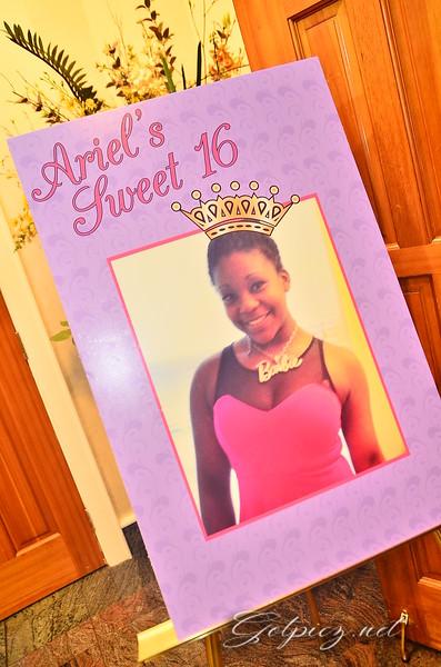 Ariel's Sweet 16  3-29-2014