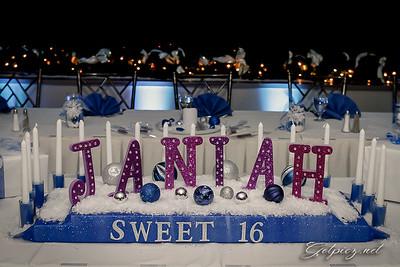 Janiah's Sweet 16 1/28/17