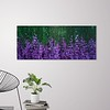 Lupines, 24 x 56, Acrylic Paint on Canvas, Unframed (Treads Series)