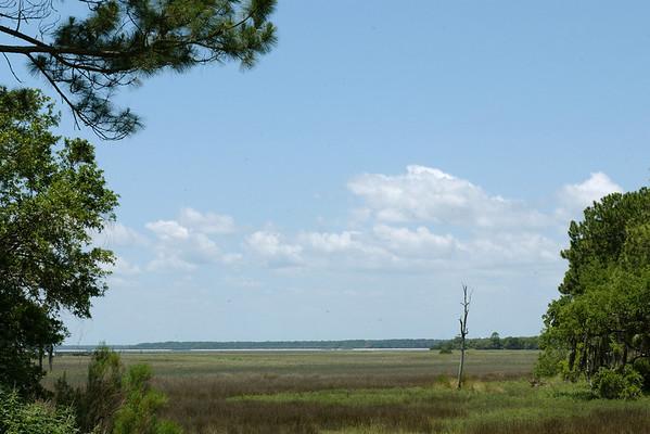 Pine Island view 84