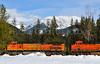 Montana Train
