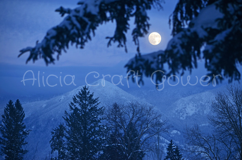 Montana Winter Moon