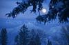 Montana Winter Moon
