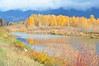 Fall Along the Flathead