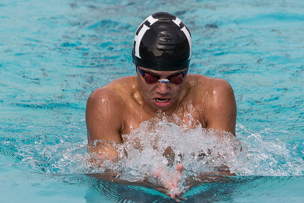 Swim 2014