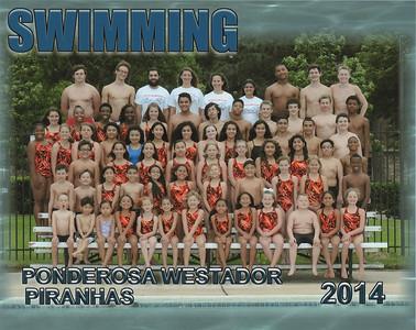 Swim Team Portraits