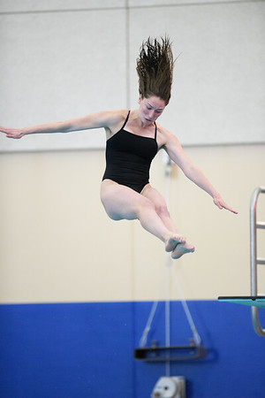 2018 01 27 Grinnell Diving