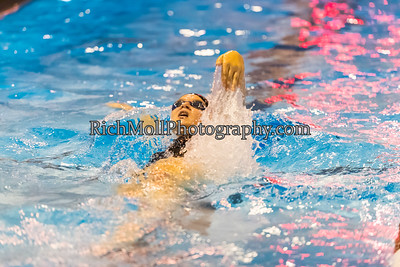 Swimming & Dive 2016-17