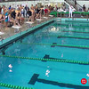 Women's 50 Butterfly Heat 1 - 2014 CCCA Swimming and Diving State Championships