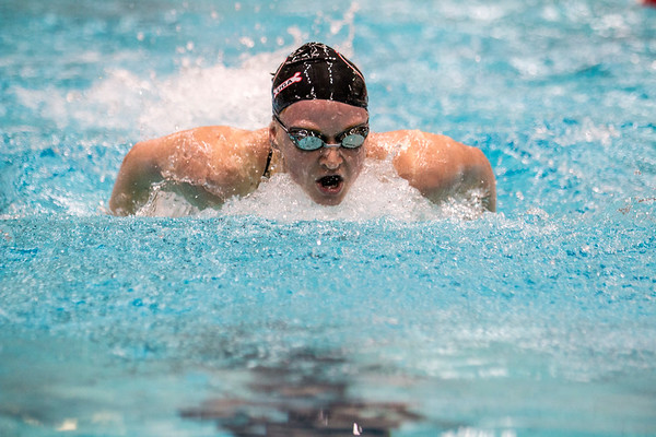 Georgia swimmer Megan Kingsley during the Bulldogs' meet with Arkansas at Gabrielsen Natatorium in Athens, Ga., on Thursday, Jan. 5, 2017. (Photo by John Paul Van Wert)
